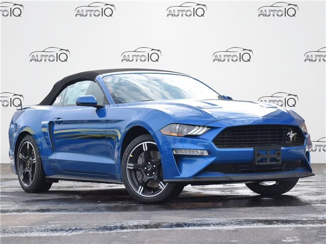 2021 Ford Mustang GT Premium (Stk: MC320) in Waterloo - Image 1 of 15