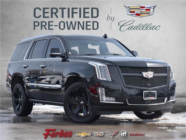 2018 Cadillac Escalade Platinum (Stk: 380235) in Waterloo - Image 1 of 22