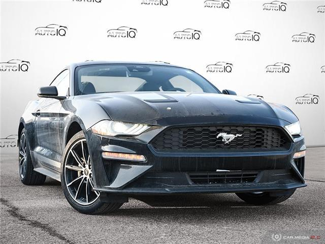 2021 Ford Mustang EcoBoost (Stk: 1G012) in Oakville - Image 1 of 26