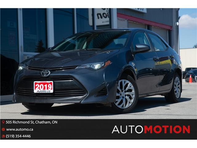 2019 Toyota Corolla  (Stk: 21411) in Chatham - Image 1 of 19
