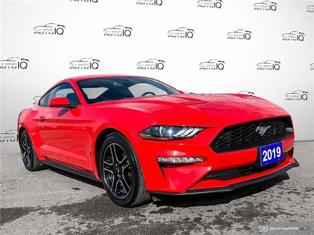 2019 Ford Mustang EcoBoost (Stk: 1260A) in St. Thomas - Image 1 of 26