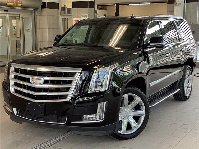 2019 Cadillac Escalade Luxury (Stk: PL21052) in Kingston - Image 1 of 30