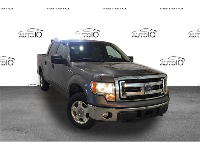 2014 Ford F-150 XLT (Stk: FD128A) in Sault Ste. Marie - Image 1 of 20