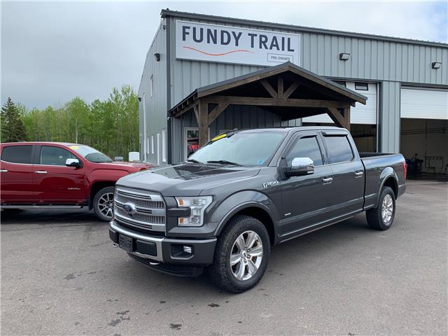 2016 Ford F-150 Platinum (Stk: 1938a) in Sussex - Image 1 of 13