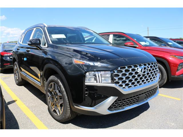 2021 Hyundai Santa Fe HEV Luxury (Stk: 16796) in Saint John - Image 1 of 1