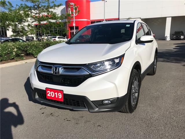 2019 Honda CR-V EX (Stk: 28836A) in Ottawa - Image 1 of 18