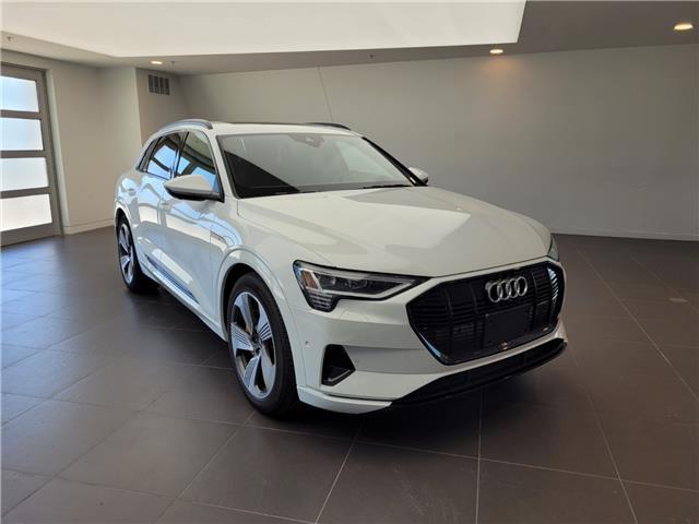 2021 Audi e-tron 55 Technik (Stk: 52656) in Oakville - Image 1 of 21