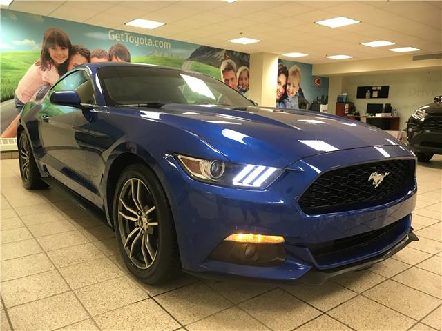2017 Ford Mustang EcoBoost (Stk: 6021) in Calgary - Image 1 of 11