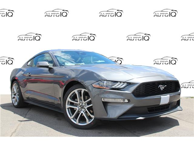 2021 Ford Mustang EcoBoost Premium (Stk: 210454) in Hamilton - Image 1 of 17