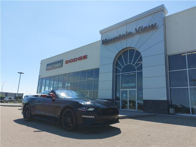 2019 Ford Mustang GT Premium 1FATP8FF1K5113597 AM089A in Olds