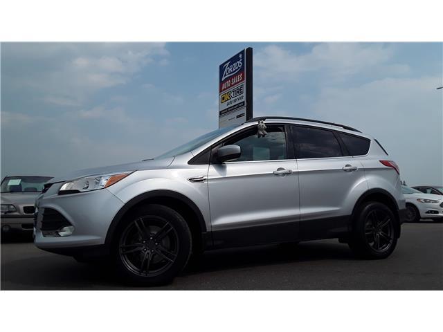 2016 Ford Escape SE (Stk: p831) in Brandon - Image 1 of 28