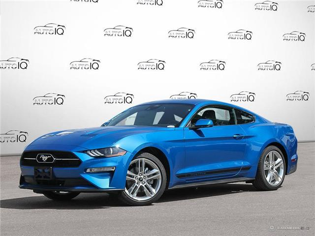 2021 Ford Mustang EcoBoost Premium (Stk: 21M3650) in Kitchener - Image 1 of 27