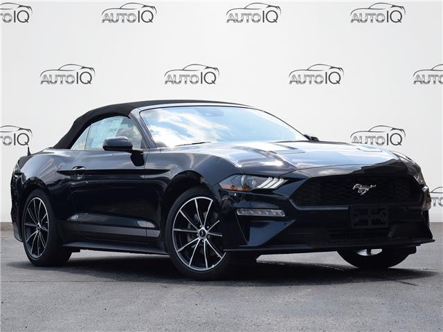 2021 Ford Mustang EcoBoost (Stk: MC907) in Waterloo - Image 1 of 22