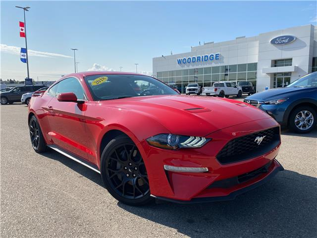 2018 Ford Mustang EcoBoost (Stk: 17920) in Calgary - Image 1 of 21