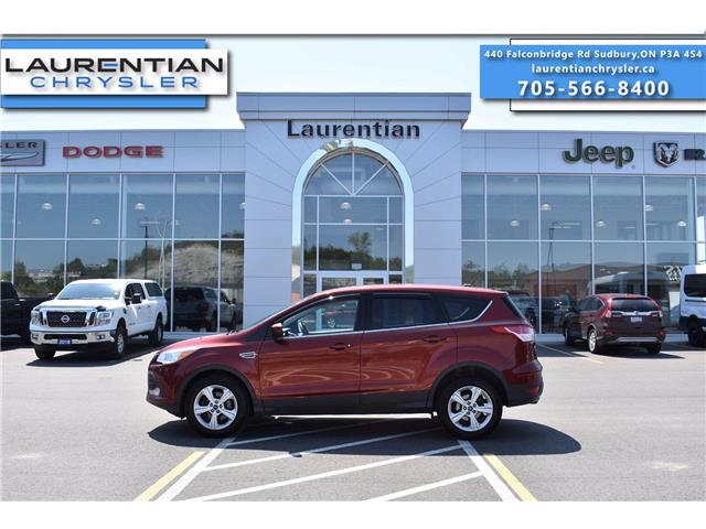 2014 Ford Escape SE (Stk: 21248A) in Greater Sudbury - Image 1 of 23
