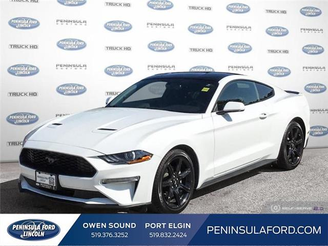 2018 Ford Mustang  (Stk: 2373) in Owen Sound - Image 1 of 25