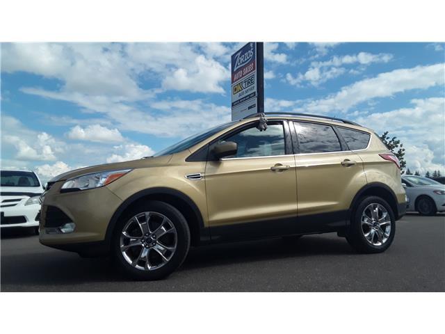 2015 Ford Escape SE (Stk: P836) in Brandon - Image 1 of 27
