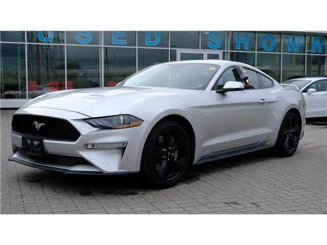 2019 Ford Mustang EcoBoost Premium (Stk: 2101171) in Ottawa - Image 1 of 14