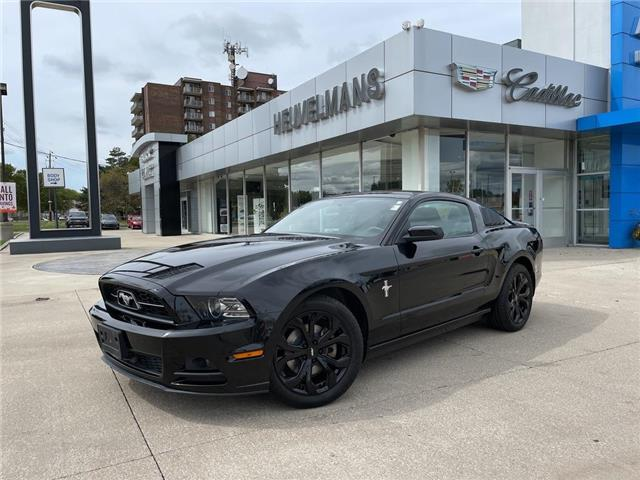 2013 Ford Mustang  (Stk: 21119A) in Chatham - Image 1 of 20