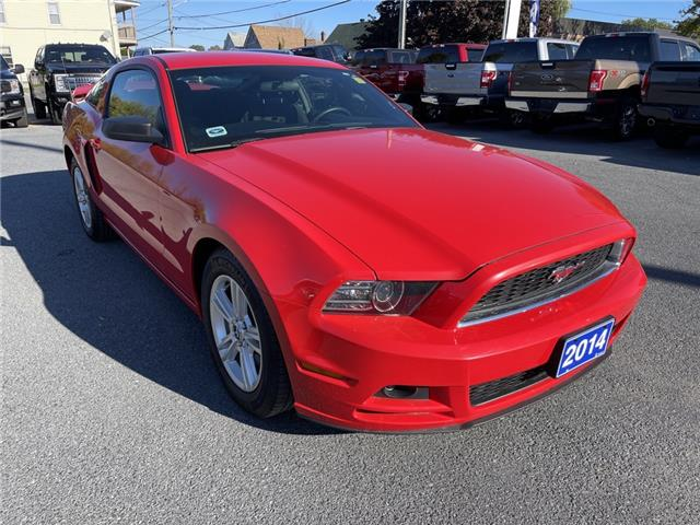 2014 Ford Mustang  (Stk: J1435A) in Cornwall - Image 1 of 27