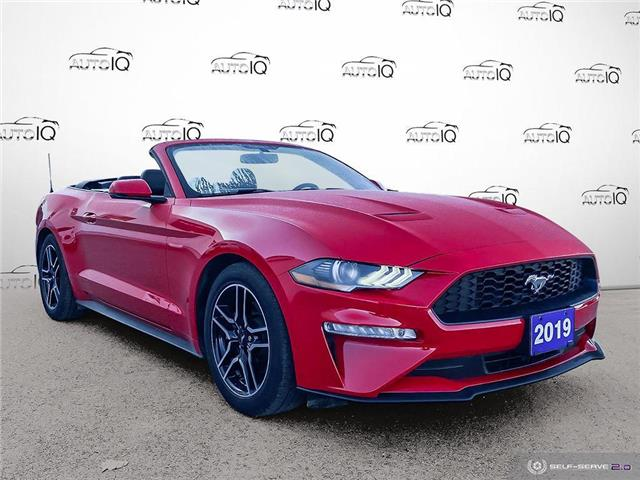 2019 Ford Mustang EcoBoost Premium (Stk: 7195A) in St. Thomas - Image 1 of 29