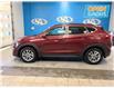 2016 Hyundai Tucson Luxury (Stk: 165536) in Lower Sackville - Image 2 of 15