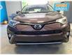 2016 Toyota RAV4 Limited (Stk: 495058) in Lower Sackville - Image 8 of 16