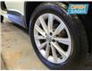 2015 Volkswagen Tiguan Comfortline (Stk: 534563) in Lower Sackville - Image 17 of 17