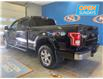 2016 Ford F-150 XLT (Stk: A92077) in Lower Sackville - Image 3 of 12