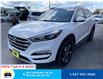 2017 Hyundai Tucson Limited (Stk: 11127) in Milton - Image 4 of 29