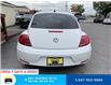 2016 Volkswagen Beetle 1.8 TSI Trendline (Stk: 11104) in Milton - Image 6 of 16