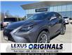 2019 Lexus NX 300  (Stk: 14301G) in Richmond Hill - Image 1 of 20