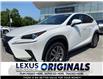 2019 Lexus NX 300  (Stk: 14516G) in Richmond Hill - Image 1 of 18