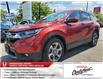 2019 Honda CR-V EX-L (Stk: CP0424) in Mississauga - Image 1 of 25