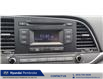 2017 Hyundai Elantra LE (Stk: 21407A) in Pembroke - Image 10 of 13