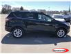 2017 Ford Escape SE (Stk: R00040A) in Midland - Image 2 of 16