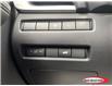 2021 Nissan Rogue Platinum (Stk: 21RG117) in Midland - Image 18 of 23