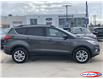 2019 Ford Escape SEL (Stk: MT0519) in Midland - Image 2 of 18