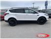 2019 Ford Escape Titanium (Stk: MT0516) in Midland - Image 2 of 21