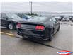 2021 Ford Mustang GT (Stk: 21MU15) in Midland - Image 3 of 10