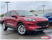 2021 Ford Escape SE (Stk: 21T482) in Midland - Image 1 of 15