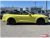 2021 Ford Mustang GT Premium (Stk: 21MU24) in Midland - Image 2 of 17