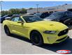 2021 Ford Mustang GT Premium (Stk: 21MU24) in Midland - Image 4 of 17