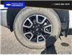 2017 Toyota Tundra SR5 Plus 5.7L V8 (Stk: PO1907) in Dawson Creek - Image 6 of 25