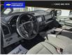 2017 Ford F-150  (Stk: 4863A) in Vanderhoof - Image 12 of 24