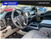 2019 Ford F-150  (Stk: 4856A) in Vanderhoof - Image 12 of 24