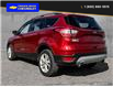 2018 Ford Escape SE (Stk: 9905) in Quesnel - Image 4 of 23