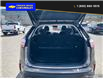 2019 Ford Edge SEL (Stk: 9793) in Williams Lake - Image 11 of 23