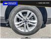 2020 Ford Edge SEL (Stk: 5009A) in Vanderhoof - Image 6 of 23
