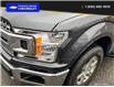 2020 Ford F-150 XLT (Stk: 9800) in Williams Lake - Image 8 of 22